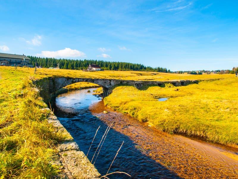 在绿色草甸的Jizerka小河有老小石桥梁的, Jizerka村庄, Jizera山,捷克 免版税库存照片