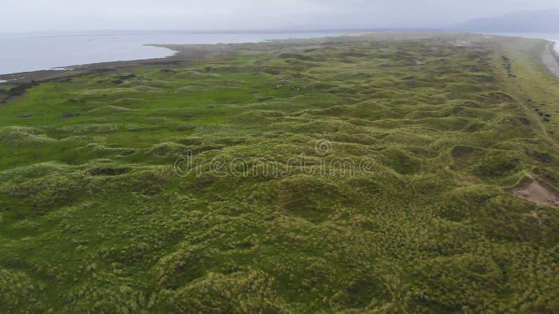 在绿色象草的沙丘的鸟瞰图在大西洋 库存图片