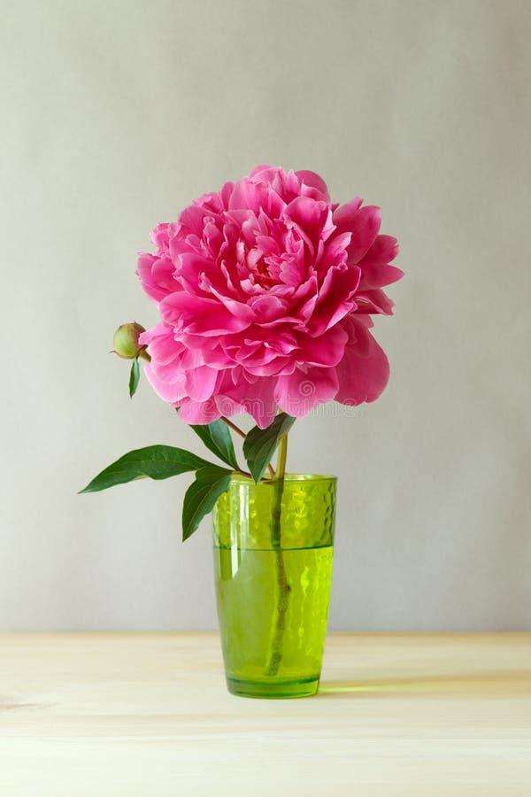 在绿色透明玻璃花瓶的新鲜的桃红色牡丹在木桌上 库存照片