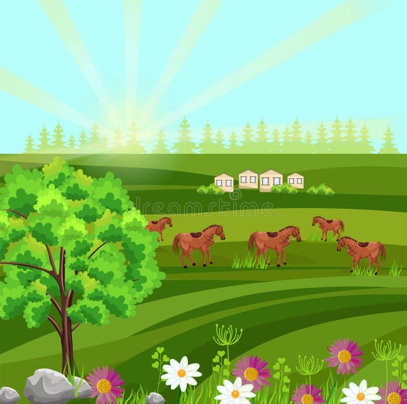 在绿色领域传染媒介的马 农厂ville晴朗的夏日背景 向量例证