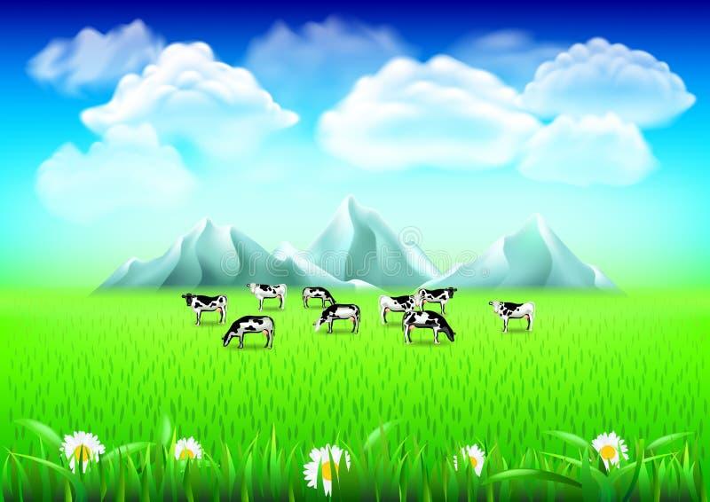 在绿色领域现实传染媒介背景的母牛 皇族释放例证
