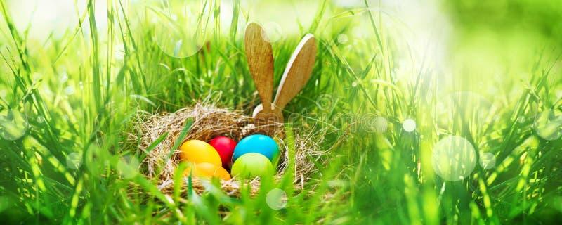 在绿色gras的复活节彩蛋 图库摄影