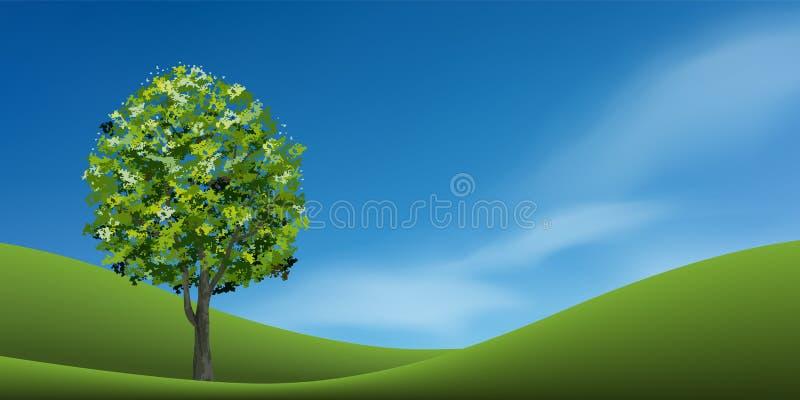 在绿草小山的树与蓝天 抽象背景公园和室外 向量例证