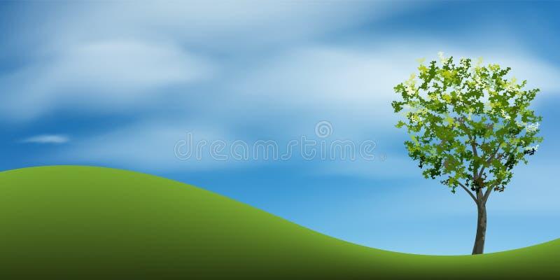 在绿草小山的树与蓝天 抽象背景公园和室外 库存例证