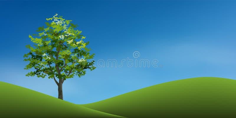 在绿草小山的树与蓝天 抽象背景公园和室外 皇族释放例证