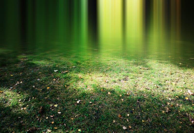 在绿草的垂直的模糊的光与黄色叶子使背景环境美化 库存图片
