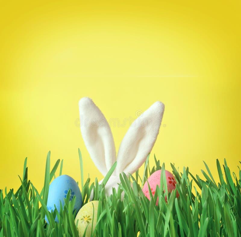 在绿草的复活节滑稽的兔宝宝用复活节彩蛋 背景上色了复活节彩蛋eps8格式红色郁金香向量 免版税库存图片