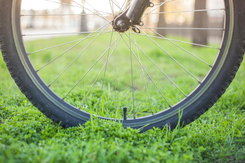 在绿草的登山车轮子 库存图片