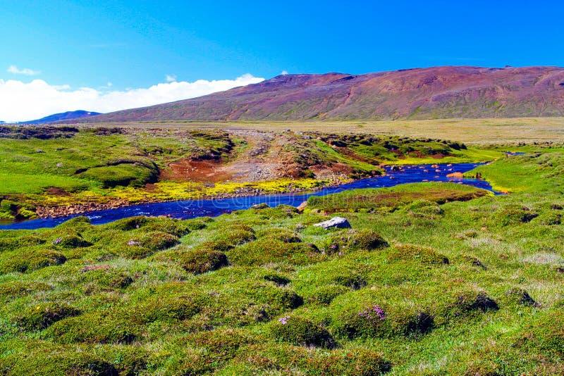 在绿草的看法在蓝色小河有在天空蔚蓝下的红色山脉背景 免版税库存照片