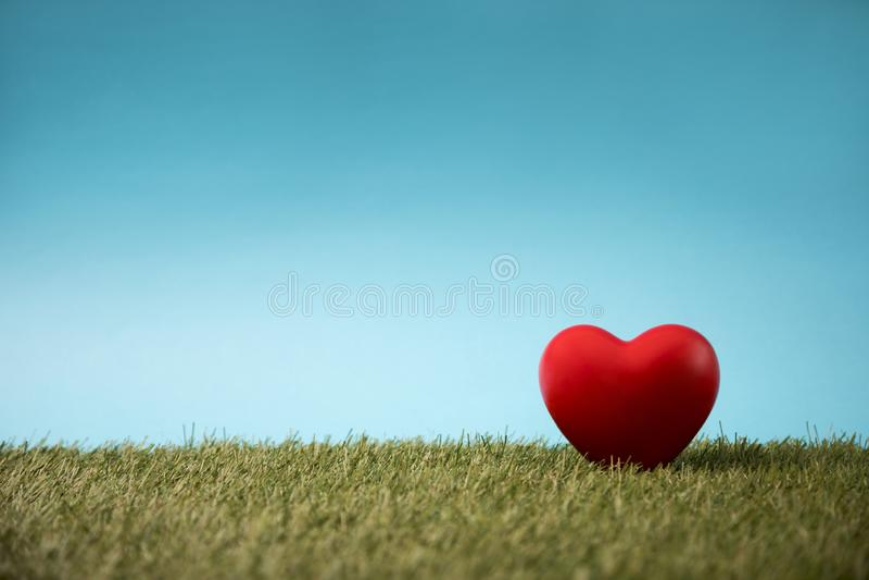 在绿草的红心 图库摄影