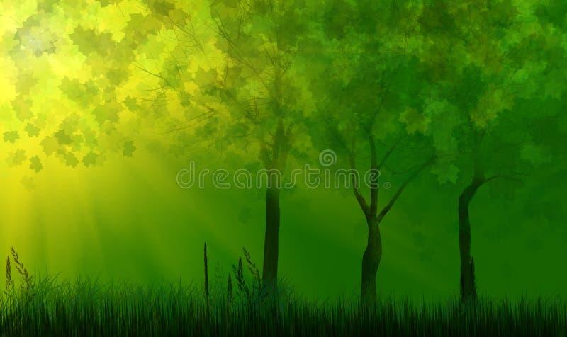 在绿草的结构树在阳光之下 向量例证