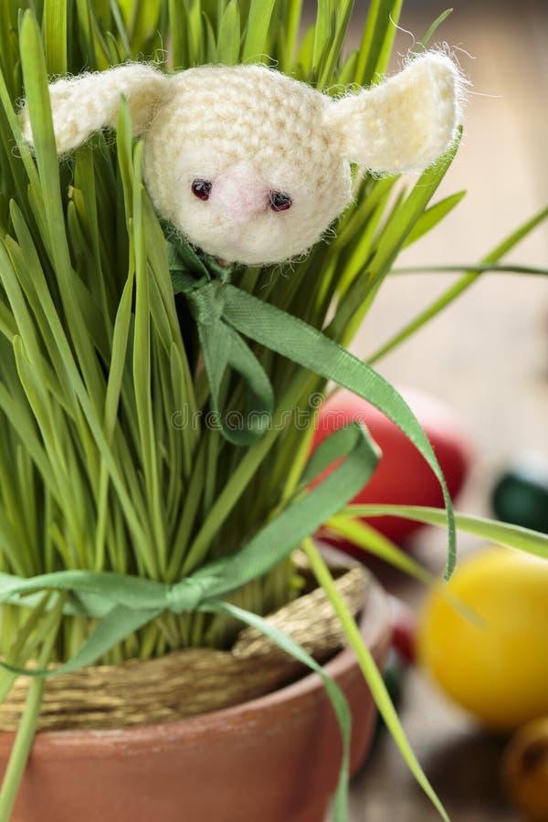 在绿草的被编织的兔宝宝 免版税库存照片