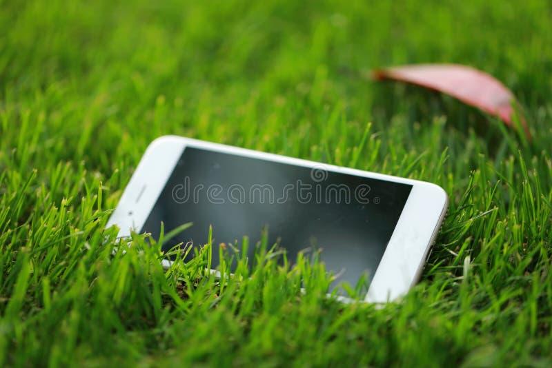 在绿草草坪的一个白色巧妙的电话手机在夏天春天公园庭院里晴天 图库摄影