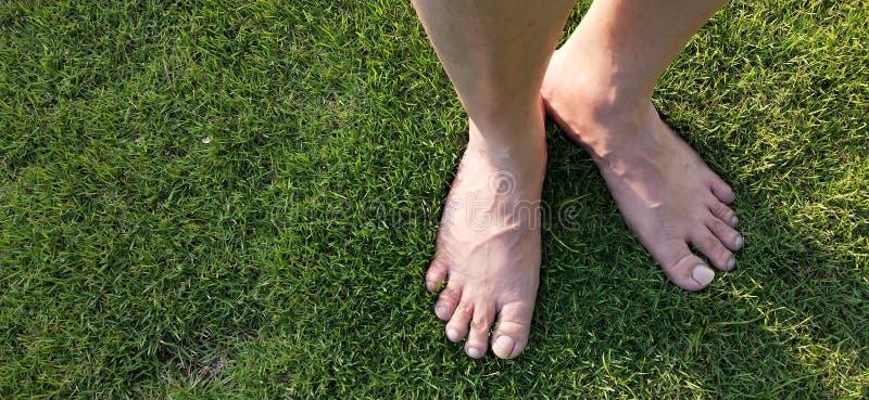 在绿草草坪的赤脚 库存照片