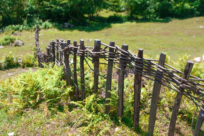 在绿草领域的古国木篱芭 库存照片