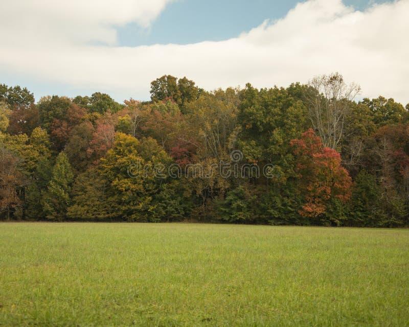 在缆绳磨房附近的秋天颜色在Smokey山国立公园 免版税库存照片