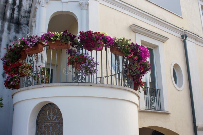 在罐的明亮的花在白色大厦圆的阳台  用花盆装饰的议院门面 免版税图库摄影