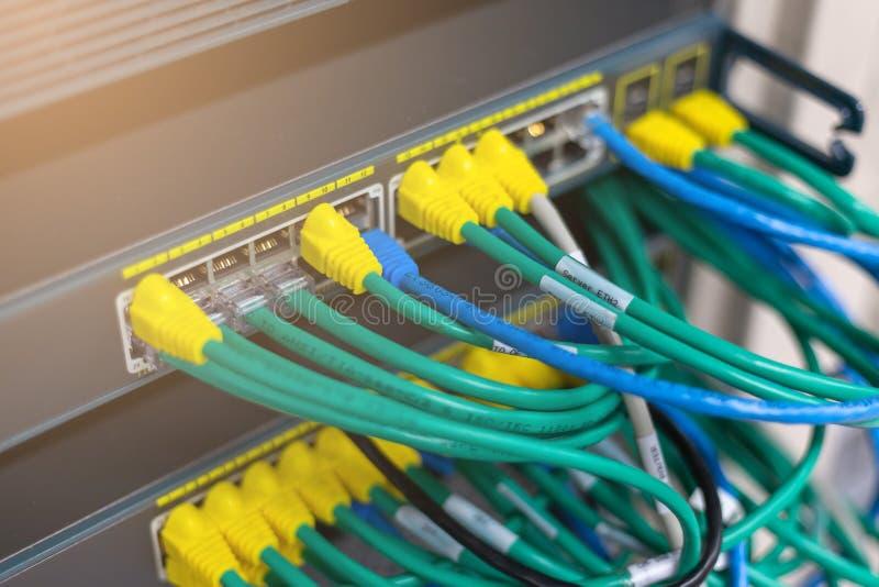 在网络转接插孔连接的网络缆绳 库存图片