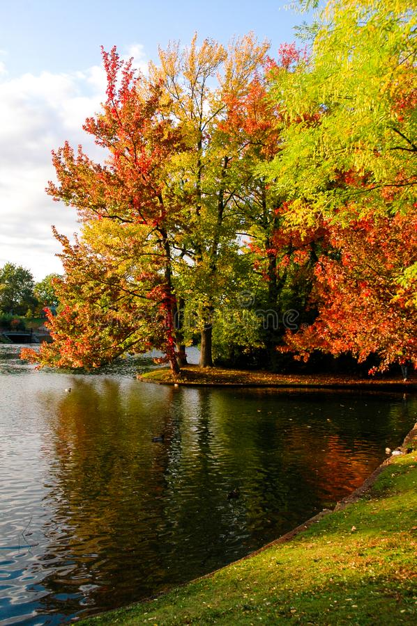 在罗杰威廉斯公园的一秋天天,上帝, RI 库存照片