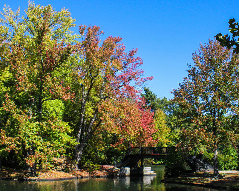 在罗杰威廉斯公园,上帝, RI的秋天 库存照片