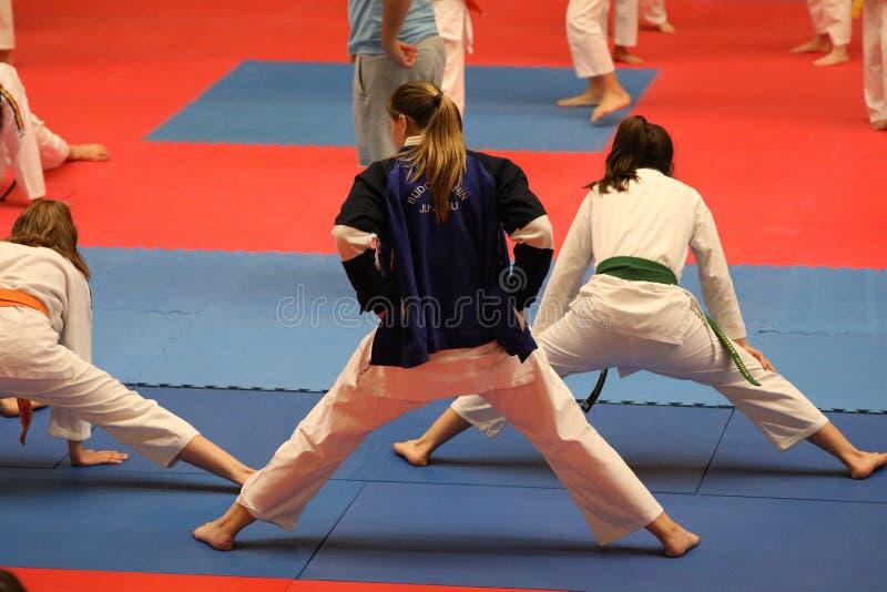 罗马尼亚体操队_在罗马尼亚冠军的jiu jitsu队,小辈, 2018年5月