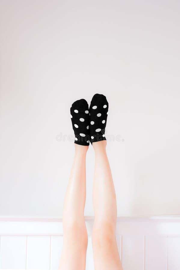 在美丽的人民的袜子是脚 佩带黑圆点的美丽的年轻女人播种的画象殴打被举的盘的腿 免版税库存图片