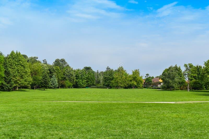 在美丽的公园白色云彩天空蔚蓝的绿草绿色树在中午12点 - ?? 免版税库存图片