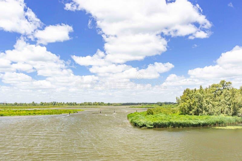 在美丽的多云天空下风横跨水艰苦吹在国立公园De Biesbosch,荷兰 库存照片