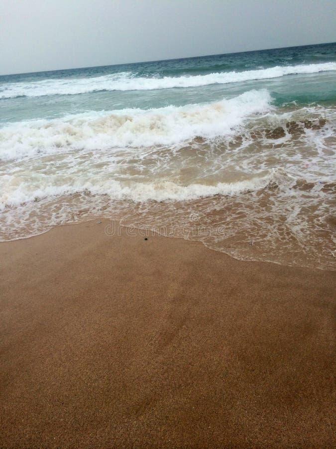 在美丽的室外海滩的自然 库存图片