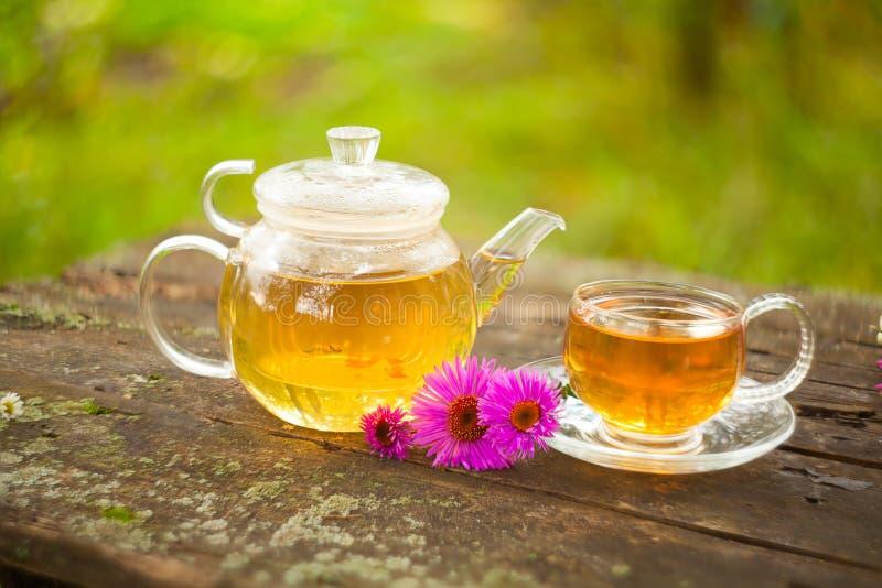 在美丽的杯子的绿茶 免版税库存图片