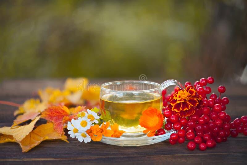 在美丽的玻璃碗的可口秋天茶在桌上 库存照片