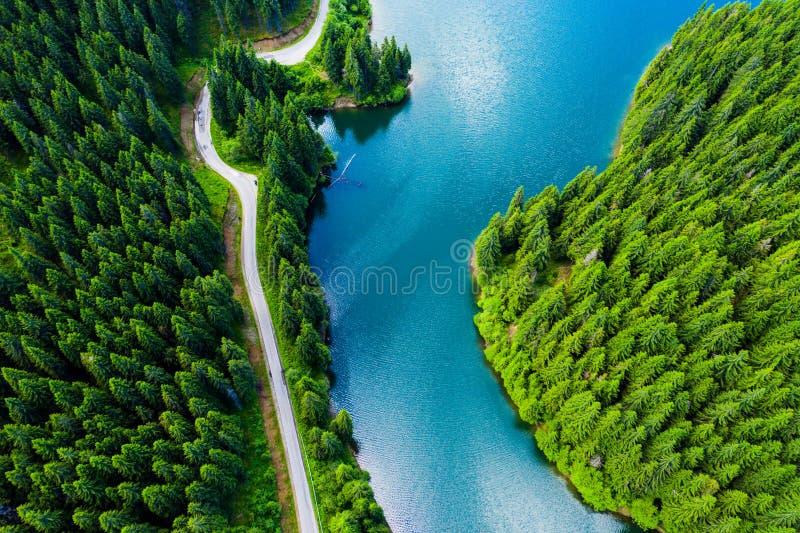 在美丽的绿松石山湖的鸟瞰图和在山的绿色森林春天 绿色森林,山湖 绿色p 免版税图库摄影