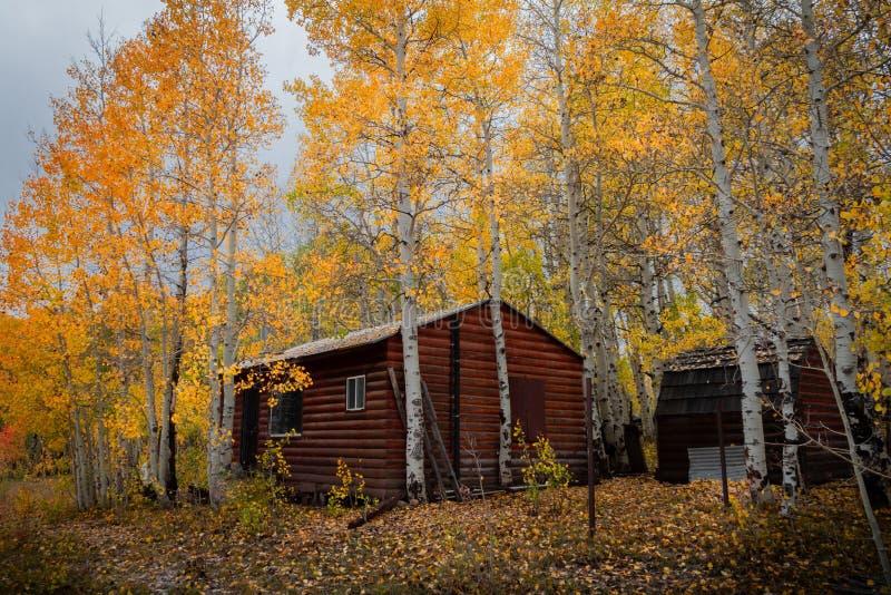 在美丽的色的秋叶中的华美的原木小屋在犹他 免版税库存图片