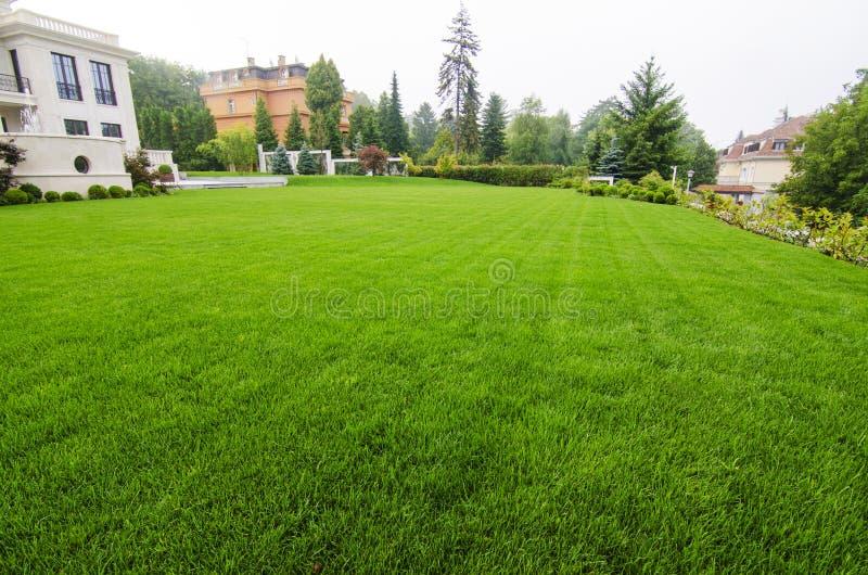 在美丽的草坪的看法 免版税图库摄影