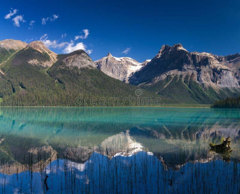 在美丽的鲜绿色湖的反射 免版税库存照片