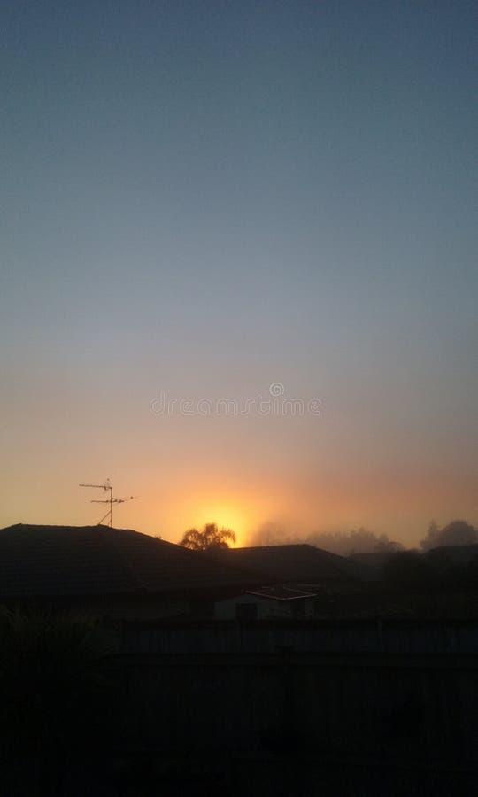 在美丽的鸟云彩之上颜色及早飞行金子早晨本质宜人的平静的反映上升海运一些星期日 免版税库存照片