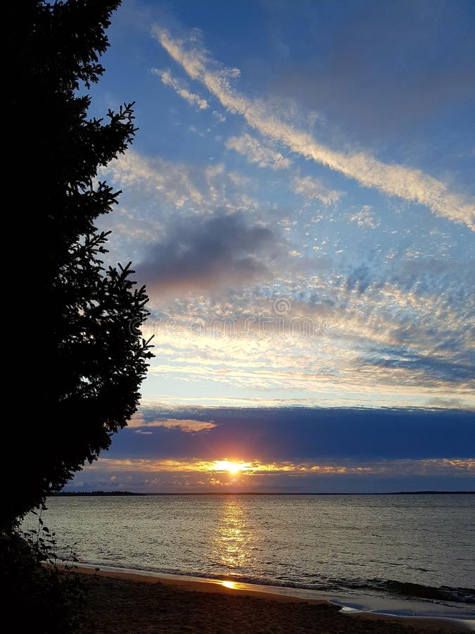 在美丽的鸟云彩之上颜色及早飞行金子早晨本质宜人的平静的反映上升海运一些星期日 库存照片