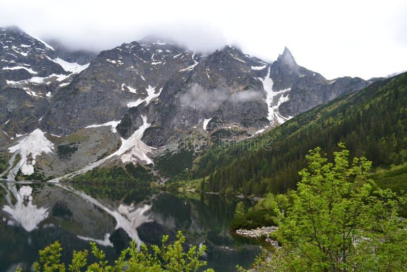 在美丽的Tatra山、森林和湖的看法 库存照片
