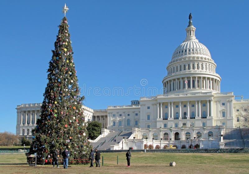 在美国国会大厦大厦在华盛顿特区,美国前面的圣诞树 库存图片