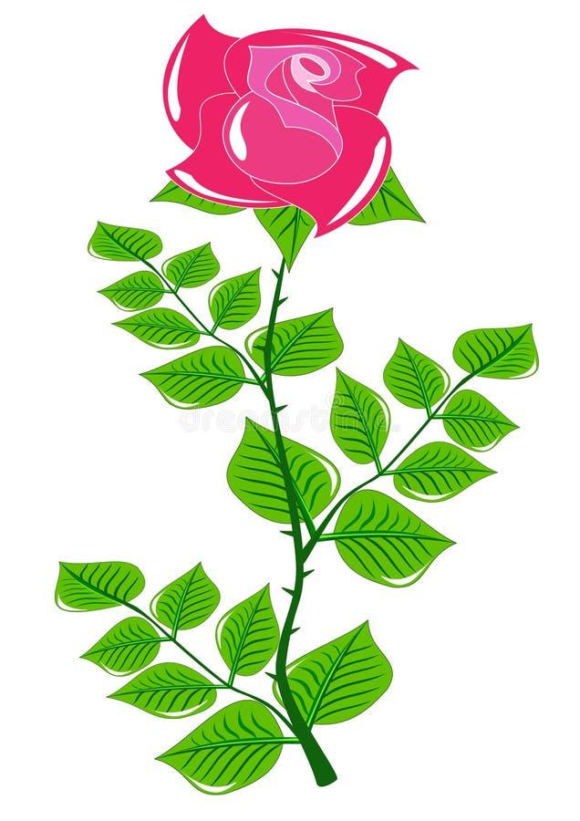 在美国钞票茎的红色玫瑰 免版税库存图片
