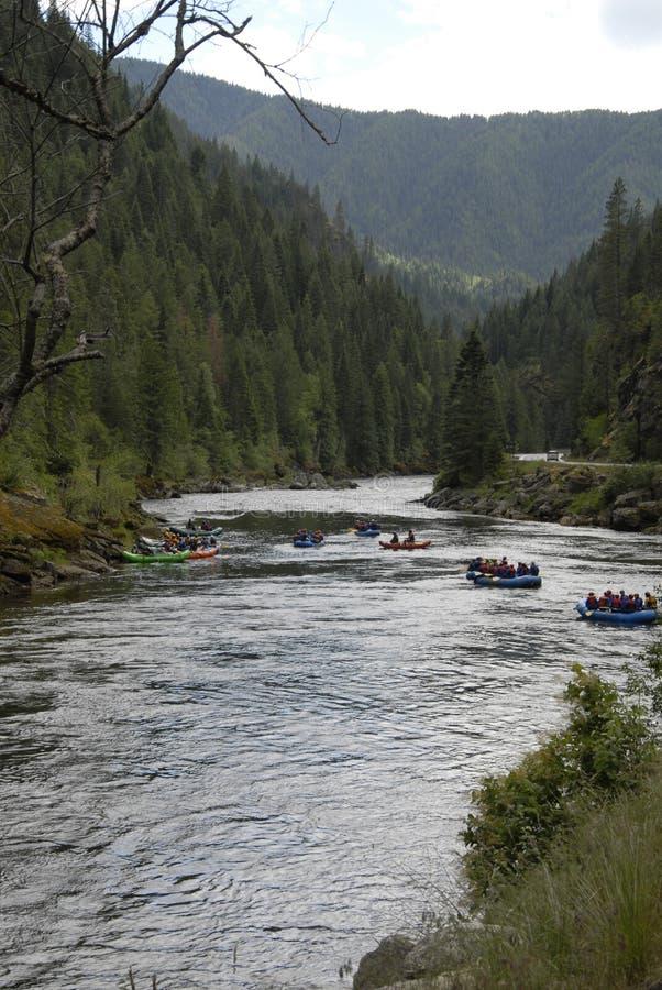在美国HIGHAY 12 CELAR水河和LOCHSA河的生活 免版税库存照片