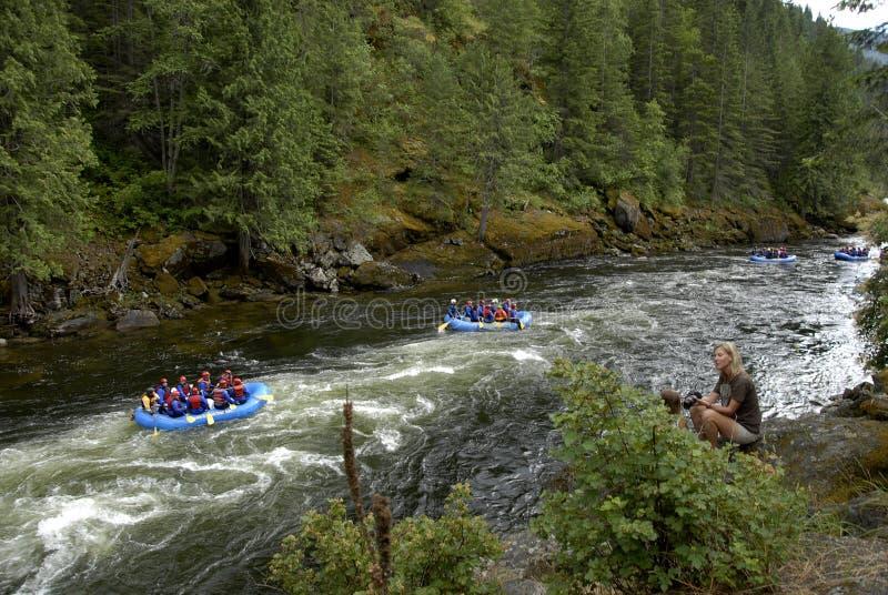 在美国HIGHAY 12 CELAR水河和LOCHSA河的生活 库存图片