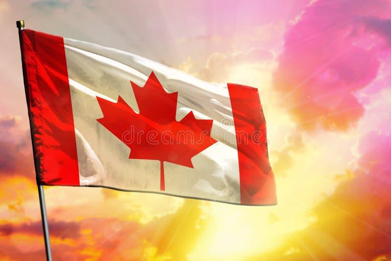 在美好的五颜六色的日落或日出背景的振翼的加拿大旗子 球尺寸三 免版税图库摄影