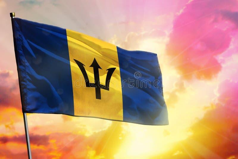 在美好的五颜六色的日落或日出背景的振翼的巴巴多斯旗子 : 免版税库存照片