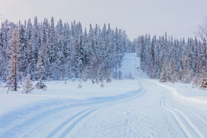 在美好的冬天风景的滑雪的足迹 图库摄影