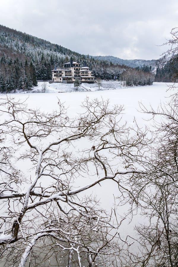 在美好的多雪的冬天森林风景的孤零零大厦,冻Brezova水坝 免版税库存图片