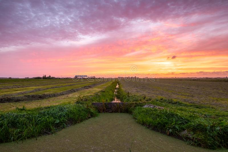 在美好的日落以后的五颜六色的多云天空在一个草甸与 图库摄影