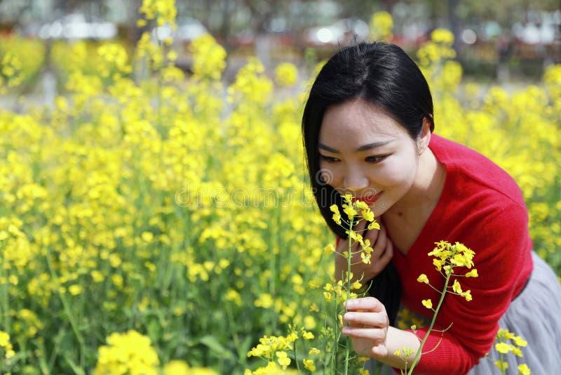 在美好的早期的春天,在黄色花中间的一个年轻女人立场被归档嗅到科尔花 库存图片