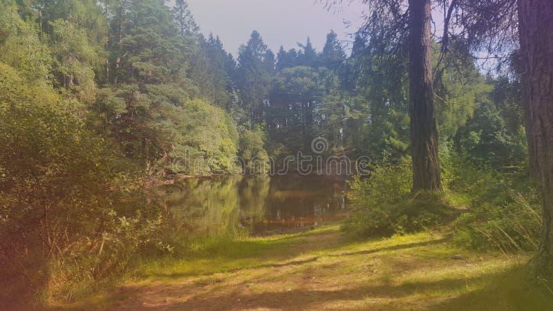 在美好的ruthin附近的湖 免版税库存照片
