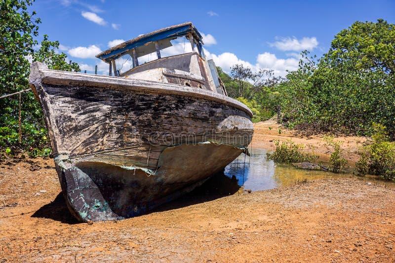在美洲红树的老遗弃小船 库存照片